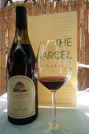 #Vendredi du Vin 55 : Bonjour le contre-pied, ou prendre le vin du bon côté !