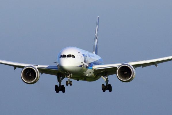 ANA-ALL NIPPON AIRWAYS  BOEING 787-8 Dreamliner  JA822A