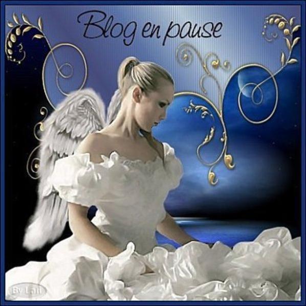 Blog en pause !!