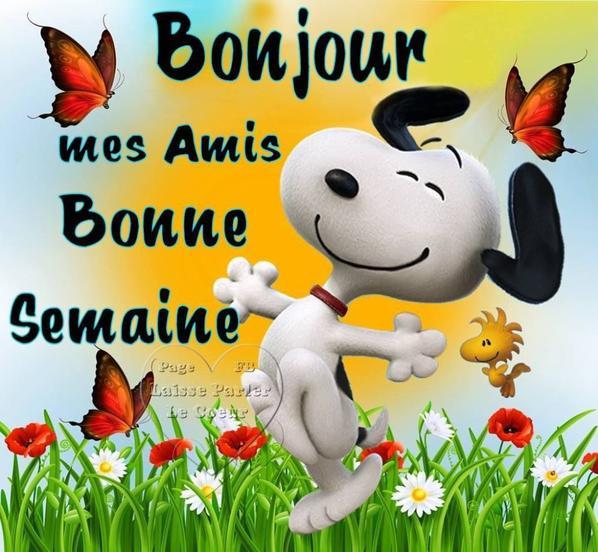 bonjour bon lundi et bonne semaine