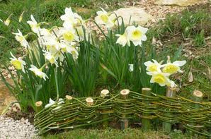faire une bordure de massif en bambou vite au jardin. Black Bedroom Furniture Sets. Home Design Ideas