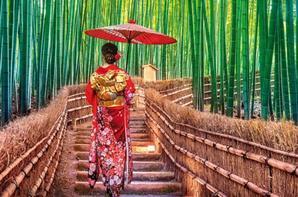 Le Japon: une destination qui me parle