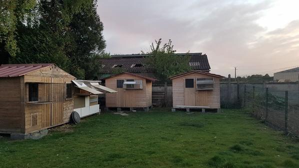 mes pigeonniers a ma nouvelle maison