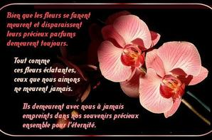 how to say au revoir mon ami
