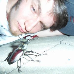 Waaasup Beetle ? -Just chilling bro.