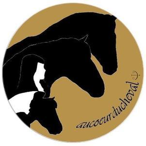 Logo Océa, Aiyana, ByeJos & Moi, que j'ai crée moi même ♥