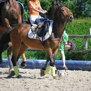 horse-ball avec lui j'aadoore ♥