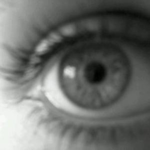Mon oeil, donnez vos avis