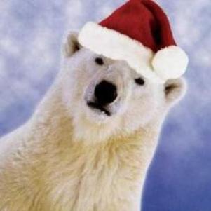 Le Père Noël est un ours