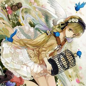Sorako a pleins d'oiseaux ! PIOU ! (°◇°)