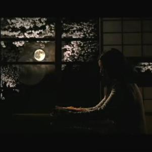 La lune et les cerisiers en fond ... magnfique non ? ♥
