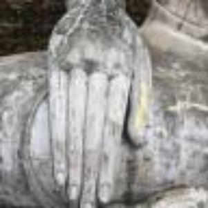 La main de Bouddha   : zen restons zen