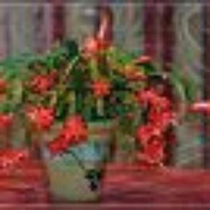 pot de fleure