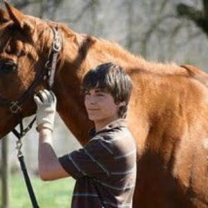 J'adore les chevaux!!!
