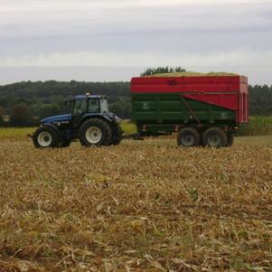New Holland TM125 et Benne Coutand 14 tonnes au maïs