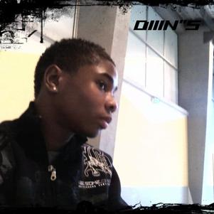 "Diiin""s"