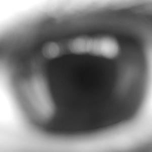 Mon Oeil. ♥