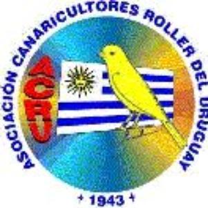Asociación de Canaricultores Roller del Uruguay