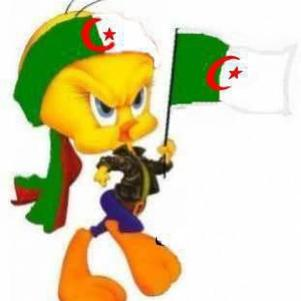 1.2.3 vive algérie