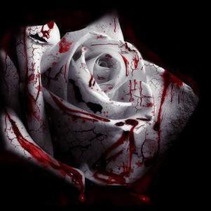 fleur en sang