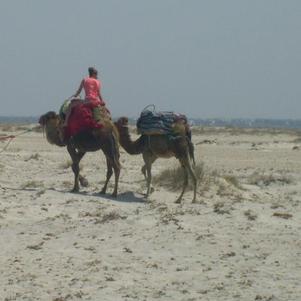 Tunisie 2010