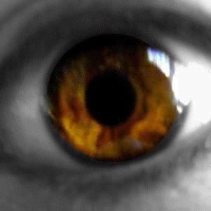 mon oeil :p j'ai juste mis en noir et blanc le contour :)