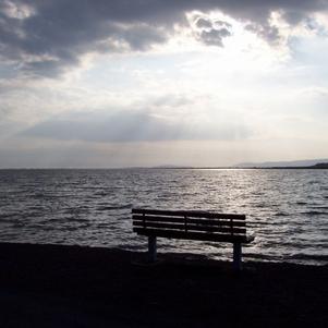 Réflexion solitaire