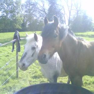 mes loulou<3