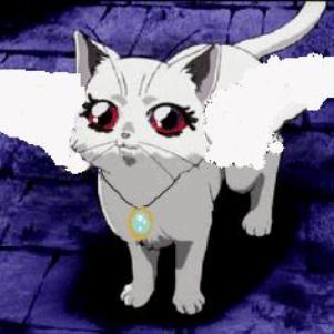 io da gatta