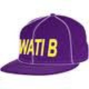 Wati B Sexion D'Assaut