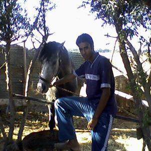 je suis un cavalier marocain