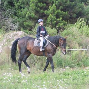 j'adore se cheval il est au fon de mon coeur je l'aime