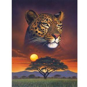 Afrique amour