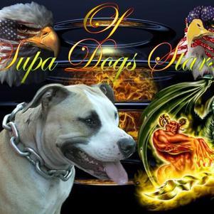 OF SUPA DOGS STARS