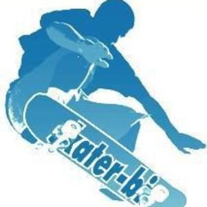 skater-bi