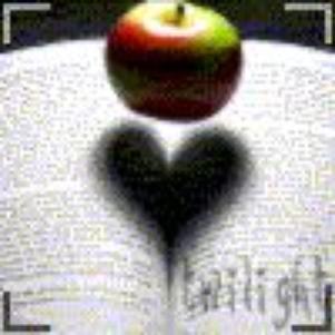 Love Twilight