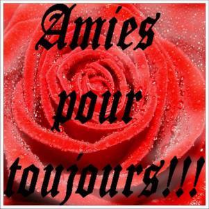 AMIES POUR TOUJOURS!!!