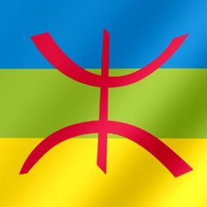 vive  amazigh