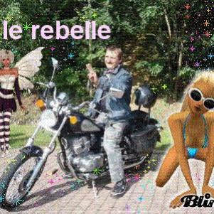 le  rebelle avec ses réves