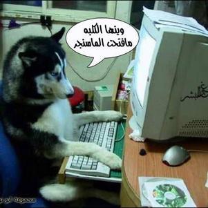 wa zideeek 3awed m3aa hadaaa  lool
