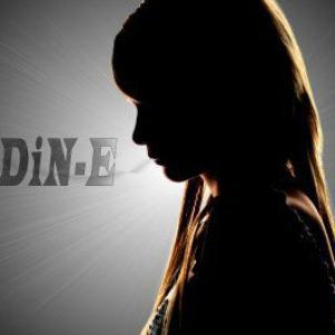 DiDiN-E