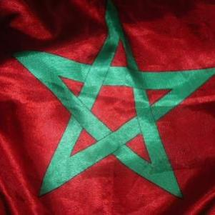 forza morocco