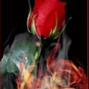 tu a ma flame ki fait vivre ton coeur