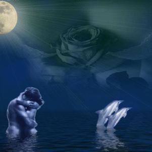 dauphin de l amour