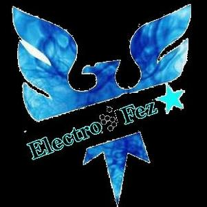 ElEcTrO FeS