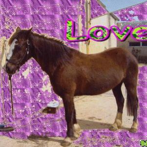 P'tiite Love