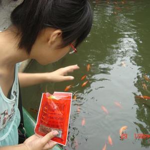 nourit des poissons