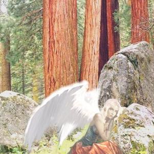 L'Ange à la fenêtre D'Orient