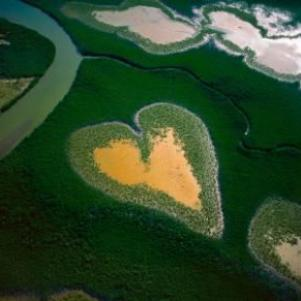 Photo de Yann Arthus-Bertrand