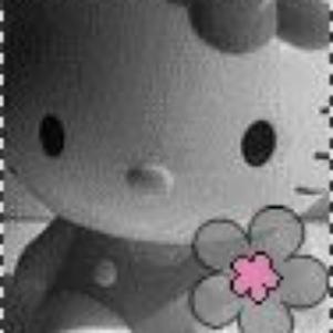 HellO Kitty (lL)